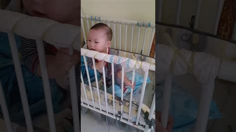 babies jumping on the bed baby jumping on his bed youtube