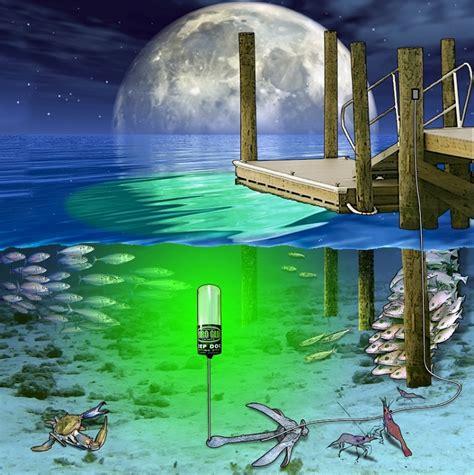 Marine Solar Lights - hydro glow seafloor sf100g underwater led dock lighting green fish light