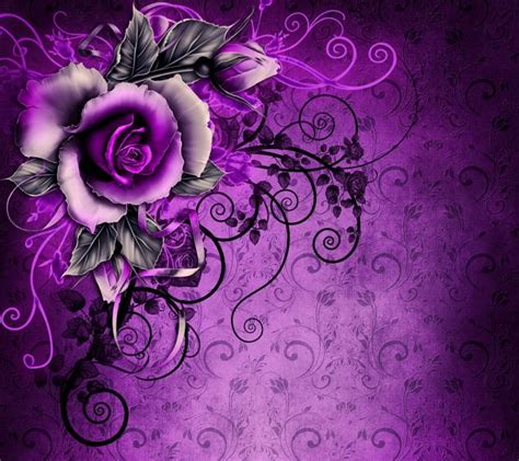 wallpaper flower zedge download rose flower wallpapers to your cell phone