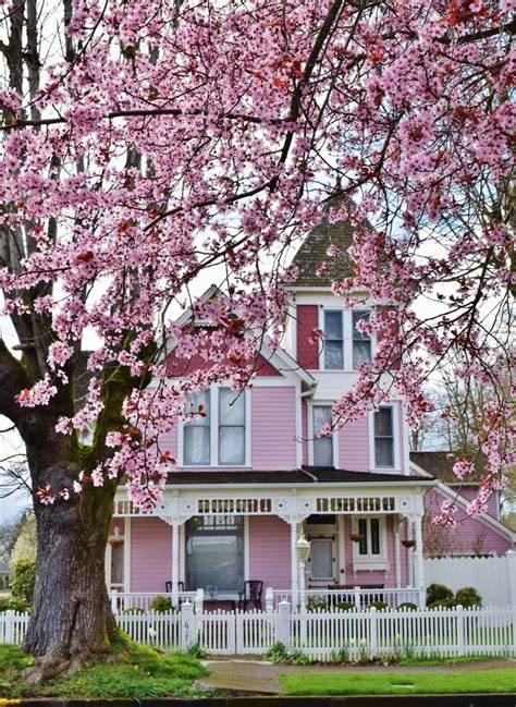 pink houses best 25 pink houses ideas on pinterest pastel house