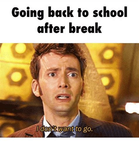 Going Back To School Meme - going back to school meme christmas decore
