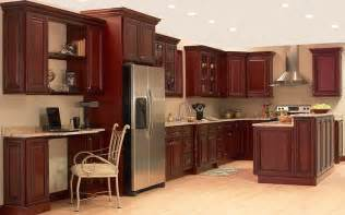Cabinets Ideas Kitchen by Kitchen Kitchen Cabinet Ideas Laurieflower 015