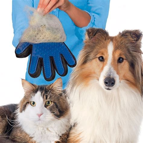 sarung tangan pijat grooming anjing blue jakartanotebook