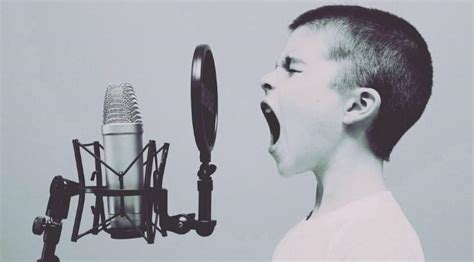 best vocal mic the best studio mics for vocals 100 to 1000 gearank
