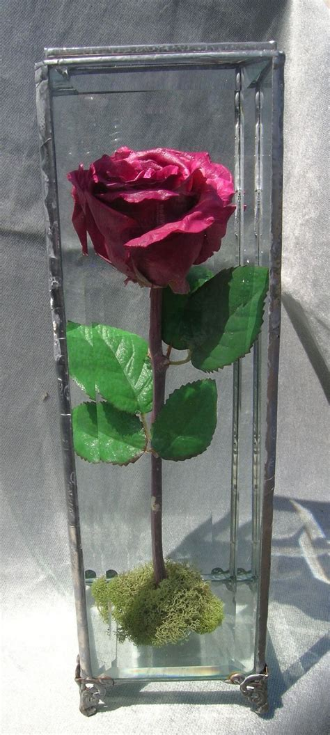 Box A Single Purple Multicolor Preserved Flower 24 Best Images About Preserved Wedding Flowers In Glass