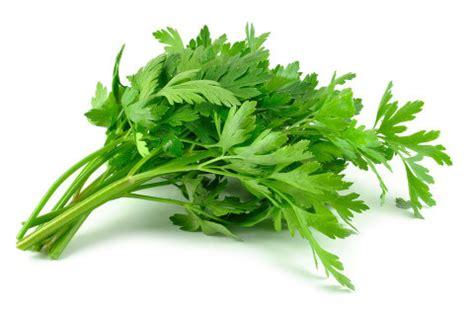 parsley benefits nutrition recipe ideas dr axe
