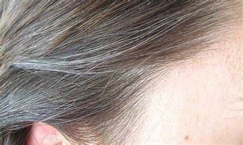how to bring out the grey in hair reverse gray hair naturally