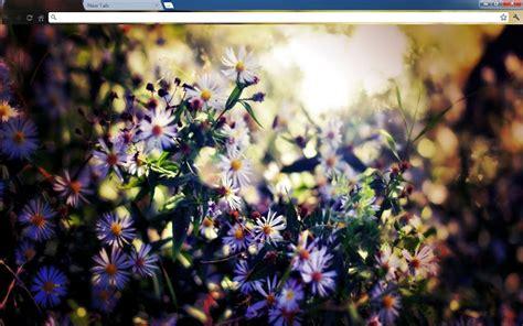 hd themes of flowers purple flowers chrome web store