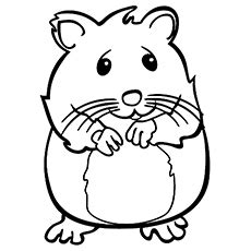 cute hamster coloring pages auromas com