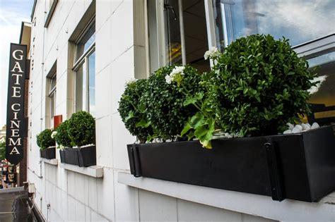 contemporary window boxes window boxes window boxes garden planters