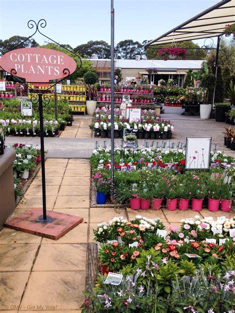 flower power garden centre flower power garden centre terrey sydney