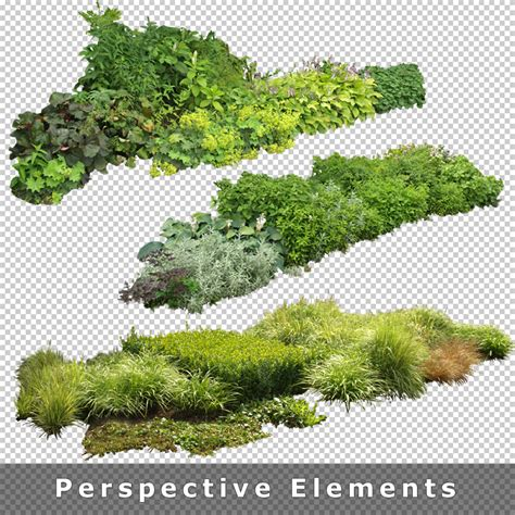 pattern photoshop vegetation 7 garden images entourage architecture jpg 800 215 800