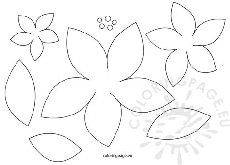 Poinsetta Templates Poinsettia Flowers Patterns Coloring Page