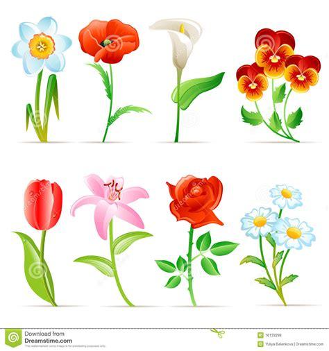 imagenes de flores libres conjunto de la flor fotos de archivo libres de regal 237 as