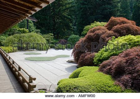 tea house portland bonsai acer rubrum red maple bon000192 stock photo royalty free image 113385505
