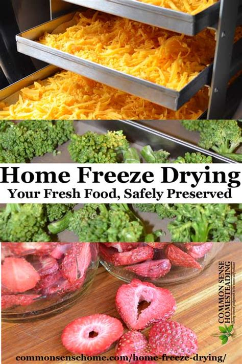 How To Freeze At Home by Home Freeze Drying The The Bad And The