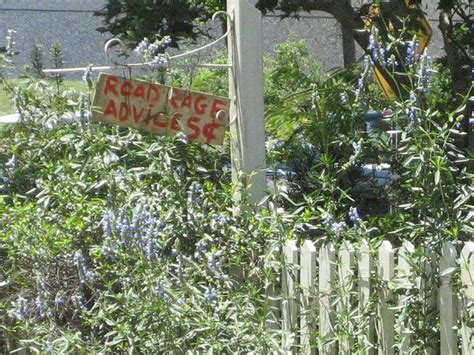 1000 images about beautiful downtown frogmore st helena
