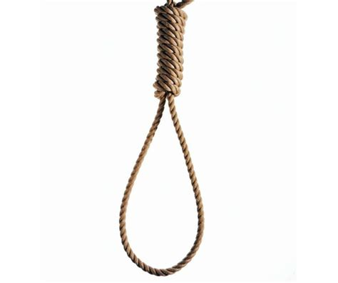 hang picture noose d 233 finition what is