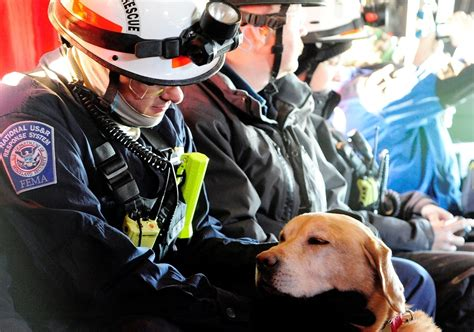 how to a to search and rescue oklahoma k9 search and rescue insurance vfis of oklahoma department ems