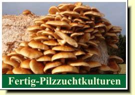 Pilz Garten Braun by Braunkappe Pilzbeet Pilze Z 252 Chten