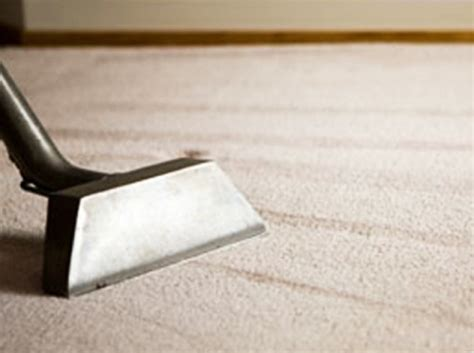 upholstery cleaning auckland carpet cleaning auckland acs carpet cleaners service