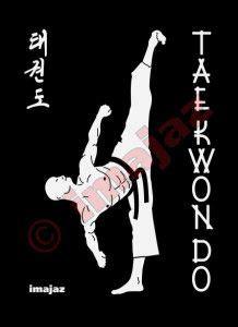 Tshirt Taekwondo Kick Logo Baam karate sports design flash pictures images