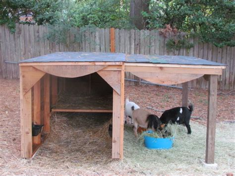 The Goat Shed by Tifany How To Build Goat Shed