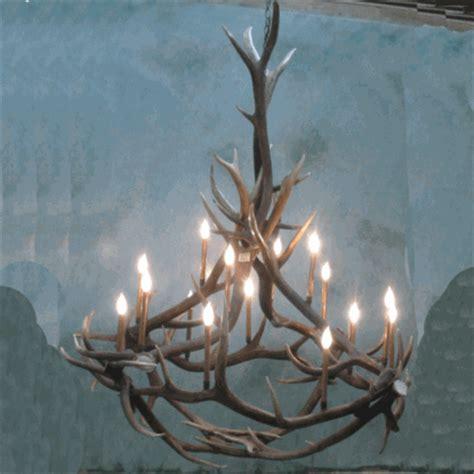 elk antler chandeliers peak quot big nelson quot elk antler chandelier 16 light