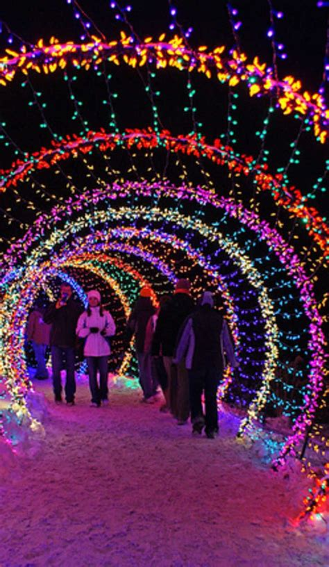 best 20 christmas lights ideas on pinterest holiday