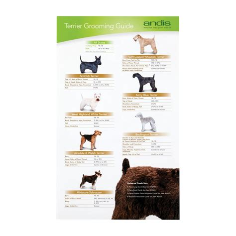 what size clippers do you use on a boys cut andis terrier clipping guide buy here groomers uk