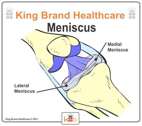 diagram of the knee meniscus knee diagram meniscus knee get free image about wiring