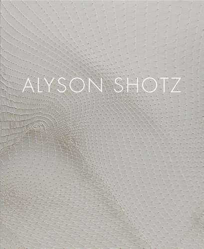 alyson shotz alyson shotz artbook d a p 2015 catalog derek eller gallery books exhibition catalogues