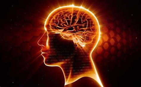 Osb Omar Smart Brain Cair Nutrisi Kecerdasan Anak situs resmi osb omar smart brain nutrisi vitamin otak osb