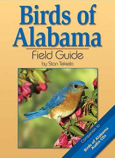 birds of alabama field guide alabama bird identification