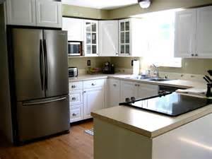 Kitchen Furniture Ikea Elegance White Kitchen Designs With Wood Floors