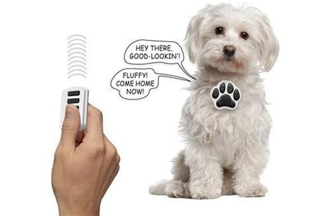 talking puppy top 10 fly pet products from skymall