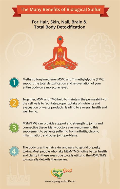Msm Detox Symptoms by 10 Best The Wonderful World Of Msm Images On