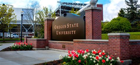 Cost Of Mba At Osu by 30 Great Value Colleges For Business Bachelor S