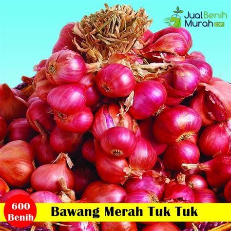 Benih Sayuran Cap Panah Merah benih bawang merah tuk tuk cap panah merah jualbenihmurah