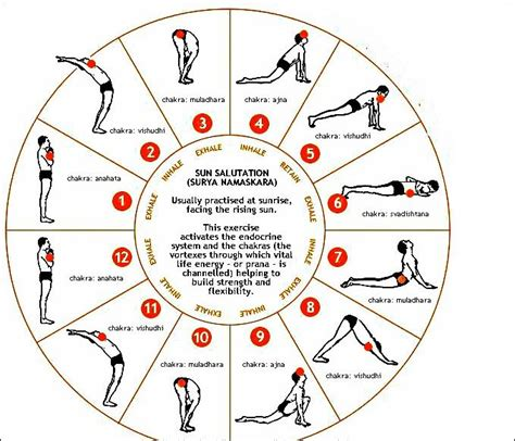 surya namaskara a technique best 25 surya namaskara ideas on yoga sun salutation sun salutation sequence and