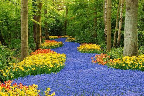 imagenes regando jardines imagenes ethel imagenes de jardines mas hermosos del