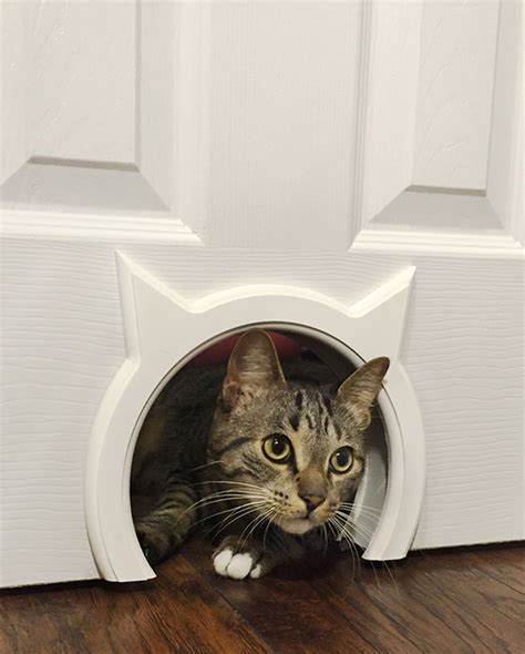 Interior Cat Door With Flap Your Doors And Your Cats Both Desperately Need The Pass