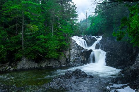 sky clouds forest river rock waterfall rapids stones tree