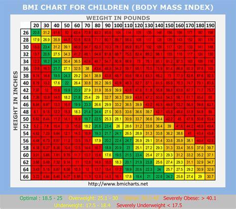 calculator bmi bmi calculator for children driverlayer search engine