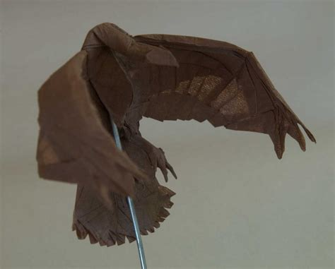 Origami Hawk - ben muller origami humpback whale praying mantis