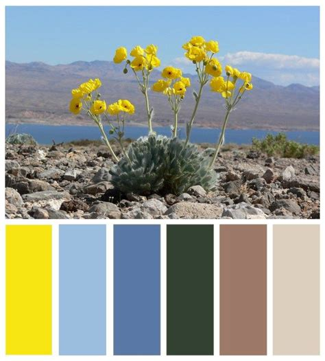 mojave color color board mojave desert and vegas inspired color
