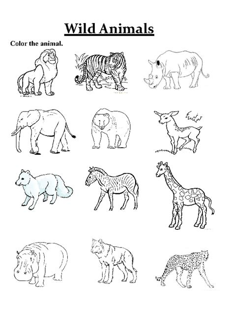 printable animal pictures of wild animals 94 free printable wild animals coloring pages 1 free