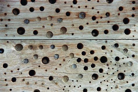 Muster Und Strukturen Melanie Petrovic Fotografie N 252 Rnberg Fotografie Strukturen