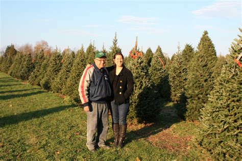 christmas tree farms in ri christmas cards