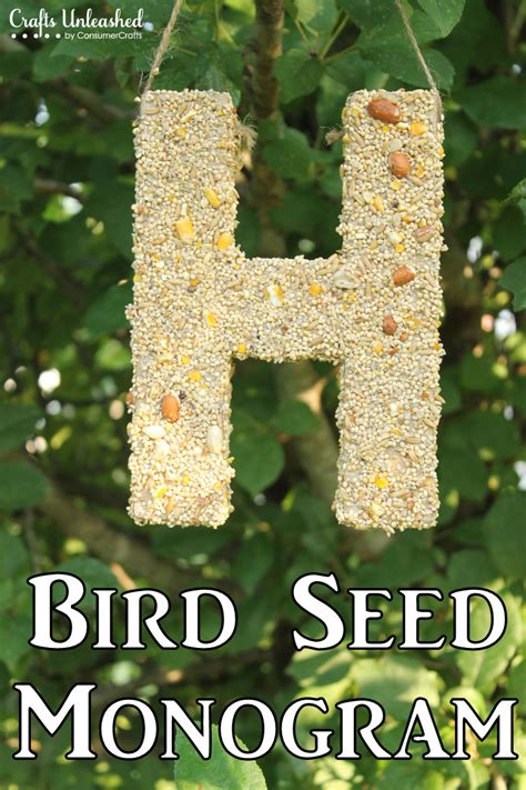 bird feeder craft for diy bird feeder monogram tutorial crafts unleashed